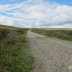 Cotton Famine Road #5