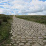 Cotton Famine Road #4
