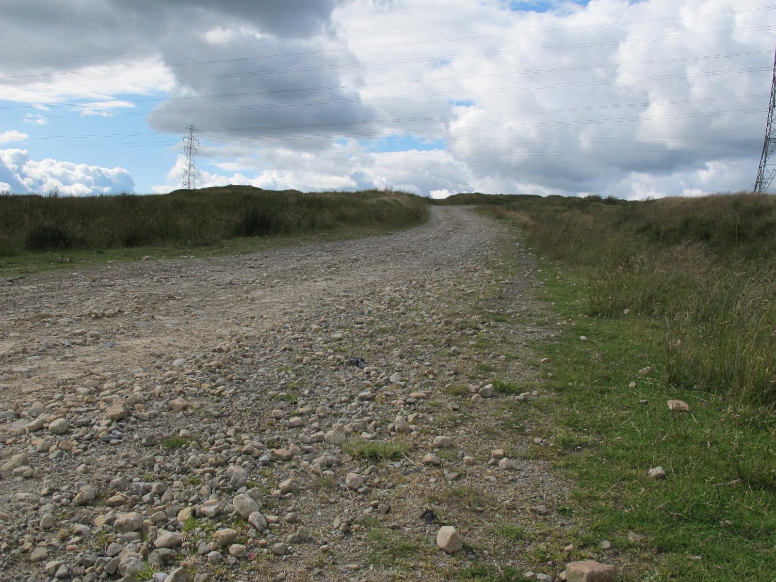 Cotton Famine Road #1