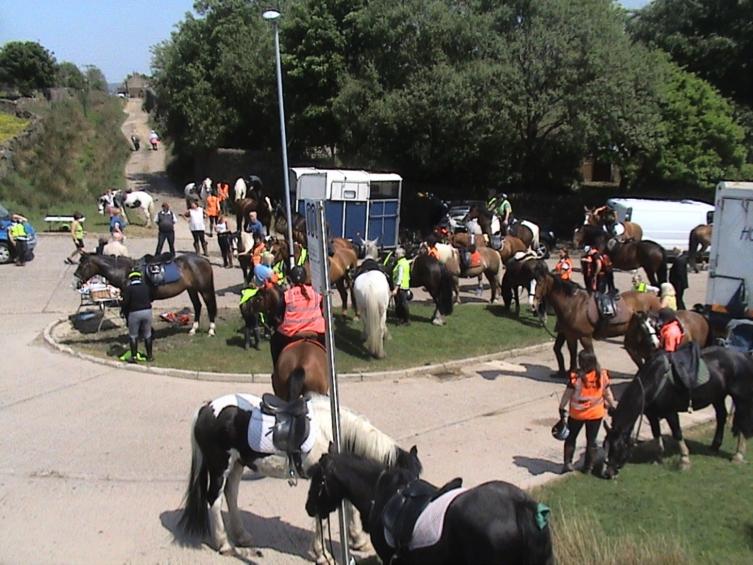 Equestrian Rendezvous